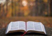 immagine di una bibbia aperta